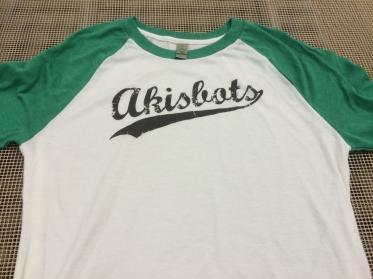 Akisbots baseball team
