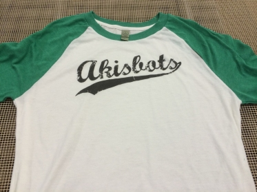 Akisbots baseball team
